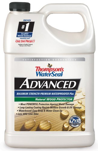 Thompson's WaterSeal Natural Wood Protector